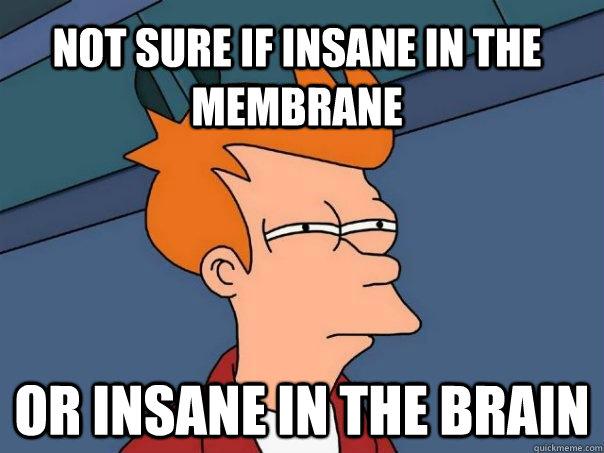 Insane in the Brain!!! – U G L Y Forever